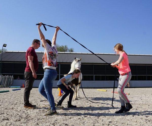 coachen-paarden-karoline-visser-gezinscoaching